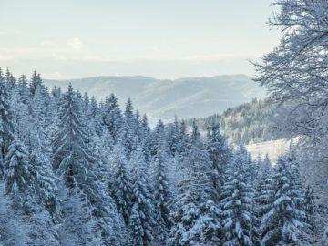 Zimní radovánky v Beskydech
