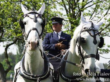 Princ Philip a zavody ve sprezeni